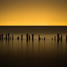 In wait for the next (Explored on Front Page) by Insight Imaging: John A Ryan Photography Yellow Art, Color Harmony, Lake Erie, Great Photos, The Great Outdoors, Art Photography, Night Photography, Amazing Photography, Photo Galleries