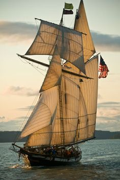 Reminds me of the tall ship festivals in Beaufort/Morehead NC. fantastically beautiful ships sailing in the inlet from the ocean sailing by Fort Macon.  Out There Images - Get Out And Learn Newsletter Page