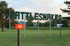 Rattlesnakes - McLean, Texas -  Mike Balluff - Route 66 Pictures