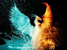 Legend says when a phoenix rises from the ashes, she is even more beautiful than she was before she burned...