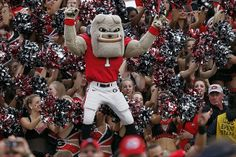 Don't forget to support our Georgia teams! Oh ya go bulldogs
