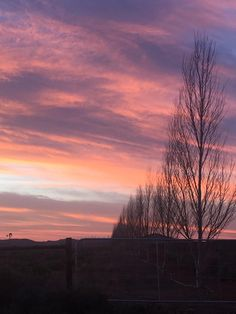 Karoo farm sunset