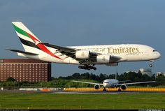 Emirates A6-EDD Airbus A380-861 aircraft picture