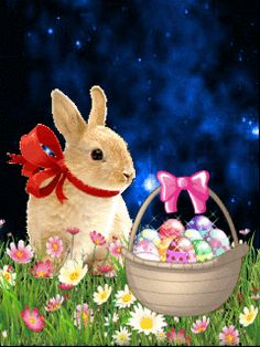 Easter Bunny easter easter eggs easter decorations easter bunny easter quote happy easter easter gifs easter greeting easter wishes happy easter friends and family animated easter Easter Art, Easter Crafts, Easter Eggs, Easter Ideas, Happy Easter Quotes, Happy Easter Gif, Happy Easter Wishes, Easter Funny, Easter Bunny Pictures