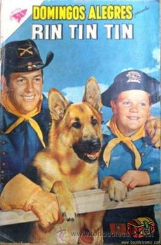 Autograph Warehouse 20367 Lee Aaker Autographed 8 x 10 Photo The Adventures Of Rin Tin Tin Show Star Pose 2 Rusty Photo Vintage, Vintage Tv, Vintage Comic Books, Vintage Comics, Mejores Series Tv, Western Comics, Tv Westerns, Old Comics, Old Shows
