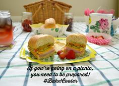 Picnics Are A Snap With Schlitterbahn's Mom's Ice Chest Challenge {avocado…