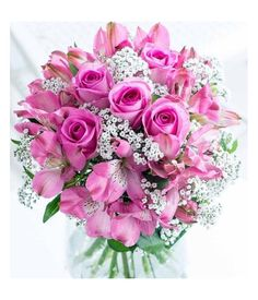 Now fulfill your dream and impress someone near in your heart by sending them deluxe pink flower bouquet with pink roses and Peruvian lilies. Mothers Day Flowers, Send Flowers, Fall Flowers, Stargazer Bouquet, Gerbera Daisy Bouquet, Beautiful Love Flowers, International Flower Delivery, Rose Basket, Flower Delivery Service