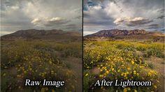 Lightroom: Intelligent & Professional Landscape Photo Raw Processing