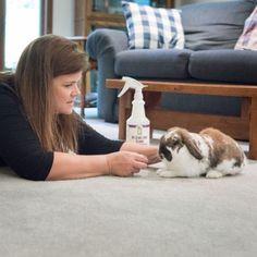 Cat Urine Odor Removal Spray