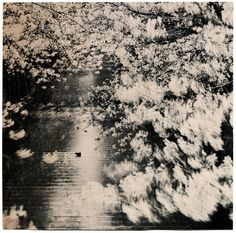 "Albarrán Cabrera ""The mouth of Krishna"" Japan, 2013. #138. Gelatin silver print tea toned"