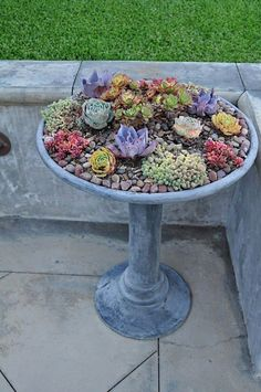 10 Unique Succulent Containers - Beautiful Home and Garden