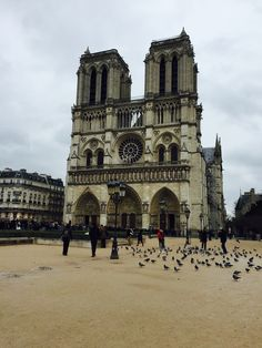 Notre Dame! Paris, France. #Travel