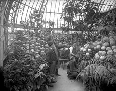 Phipps Conservatory; 1907