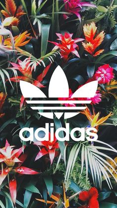 Follow @jayeshtripathi for more Vibrant colour adidas tumblr