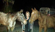 J&M Acres Horse Rescue's latest saves <3 www.jmacresrescue.com