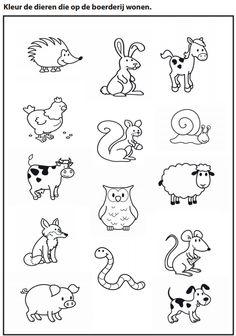 Kleur de dieren die op de boerderij wonen [Juf Marije]