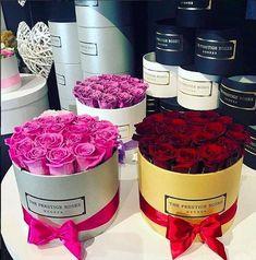 Colección Rosas Preservadas - Caja Medio Cilindro Plata - The Prestige Roses España