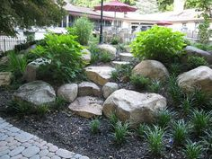 Admirable Rock Garden Landscaping Ideas To Make A Beautiful Front Yard Landscaping Supplies, Front Yard Landscaping, Backyard Landscaping, Landscaping Ideas, Backyard Ideas, Modern Backyard, Front Yard Walkway, Desert Backyard, Luxury Landscaping