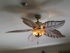 Jean's Ceiling Fan Sightings