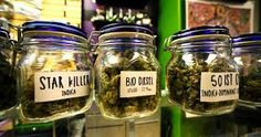 CANABIS AUTHORITY weed Shop Visit and place your order NOw at https://www.canabisauthority.com . Buy the Highest Quality Marijuana strains ,Order weed online, White Widow,sour Diesel,Harlequin,Blue dream,Lemonn haze,granddaddy purple,Cannabis oil for patients with illness like cancer,pain,anxiety, liver problem,epilepsy and more Order weed online, Buy weed online,Buy Marijuana online,buy moonrocks online ,Go to..https://www.canabisauthority.com Text or call +1 725 400 4731