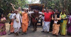 By Candrabhaga Devi Dasi On December 20, 2016 an international group of around 35 devotees (12 matajis, rest prabhus) left Sri Mayapur Dham from Srila Prabhupada's Bhajan Kutir for a seven da…