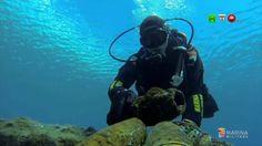MARINA MILITARE: Distrutti oltre 2000 ordigni inesplosi dai subacquei di...