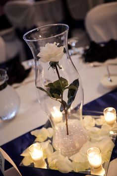 Single White Long stem rose (from Hobby Lobby) 16in Hurricane Vase, royal blue sash, and a few fresh white rose petals and some candles