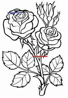 Ausmalbilder Blumen Malvorlagen Blumen Adultcoloringpages Rose Coloring Pages Flower Coloring Pages Flower Drawing