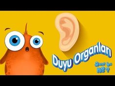 5 Duyu Organımız | Okul Öncesi Eğitici Animasyon | Anne Bu Ne? - YouTube Baby Songs, Kids Songs, Activities For Kids, Crafts For Kids, Music Games, Youtube, Logos, Children, Anne