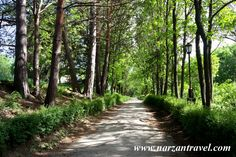 Дорожки в парке. #Кисловодск. #photo #spa #park #Kislovodsk #Russia