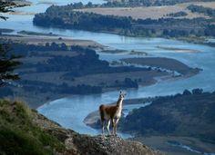 Esta naturaleza impoluta y salvaje y los paisajes y belleza de la Patagonia son reconocidas hoy en todo el mundo, constituyendo un valor y atractivo de clase mundial. Se podría decir hasta que la Patagonia se ha convertido en una marca importante e inconfundible de alto valor económico para Chile.