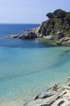 Insel Elba: Die richtige Dimension einer Reise |ZEIT ONLINE