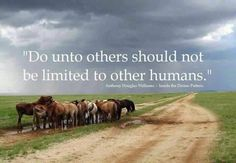 #indeed #kindness #crueltyfree