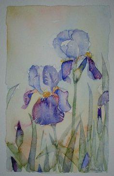 SOLD! Watercolour painting of Irises original art by artist Amanda Hawkins 13 x…