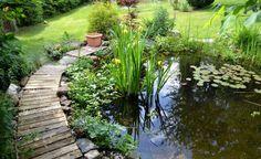 Teichfolie: Löcher finden und abkleben -  Ein schön gestalteter Gartenteich ist in jedem Garten ein Hingucker. Er kann aber auch Probleme verursachen – zum Beispiel, wenn er Wasser verliert. So finden und reparieren Sie das Loch in der Teichfolie.