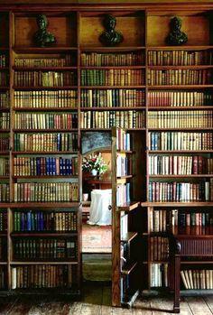 Un ensueño de biblioteca