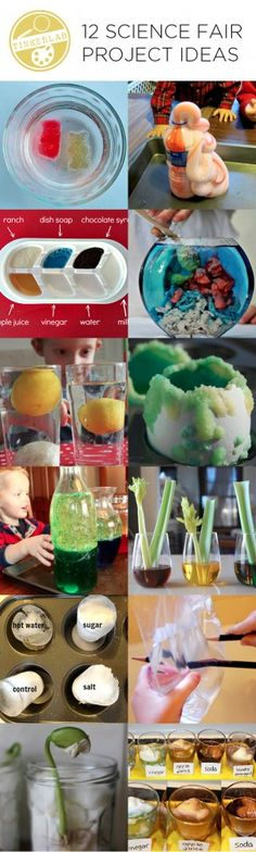 These twelve science fair project ideas encourage children to test, tinker with, experiment, hypothesize, and evaluate various properties and phenomena. These could be fun summer projects! Preschool Science, Science Experiments Kids, Science Classroom, Science Lessons, Teaching Science, Science For Kids, Science Activities, Science Projects, School Projects