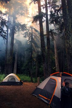 Camping in the Pacific Northwest. Photo by NaturePunk