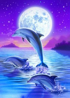 Day Of The Dolphin Art Print by Robin Koni. All prints are professionally printed, packaged, and shipped within 3 - 4 business days. Choose from multiple sizes and hundreds of frame and mat options. Dolphin Painting, Dolphin Art, Dolphin Photos, Dolphin Images, Dolphins Tattoo, Water Animals, Beautiful Nature Wallpaper, Cute Animal Drawings, Ocean Life