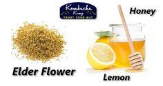 Making Elderflower Kombucha is a natural given its long history as medicine. This Elderflower Kombucha Recipe has honey, mint & cucumber for rounded flavor. Jun Kombucha, Kombucha Starter, Kombucha Benefits, Kombucha Flavors, How To Brew Kombucha, Kombucha Recipe, Fermented Tea, Fermented Foods, Best Probiotic Foods