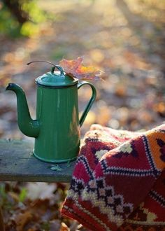fall time (my 2nd favorite season of the year - because i love christmas too much so winter will remain 1st!) = tea/coffee time in a secret place outside... with leaves everywhere. yes please!