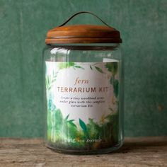 Grow a lush terrarium full of ferns and moss with this fern terrarium kit. A Terrain exclusive, this kit makes terrarium gardening easy & is a great gift! Wall Terrarium, Garden Terrarium, Terrarium Ideas, Terrarium Workshop, Stress Relief Gifts, Natural Stress Relief, Glass Jars, Candle Jars, Noel