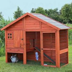 step 1 - build coop and put bunnies in it.  step 2 - have bylaw guy get in your face about it.  step 3 - Bunnies are allowed  step 4 - once dust settles, trade out bunnies for chickens  - very very quietly.