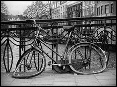 Amsterdam - Urban Photography - Sable & Ox