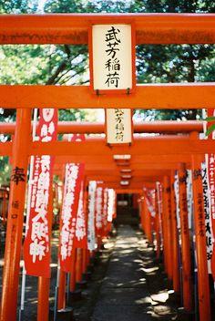 Inari Shrine    武芳稲荷