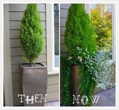 Think layers when you pot up plants. this would be great for front of house