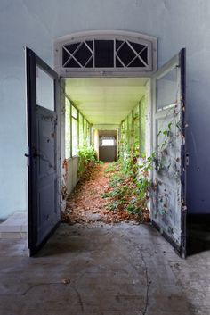 beautiful decay doorway