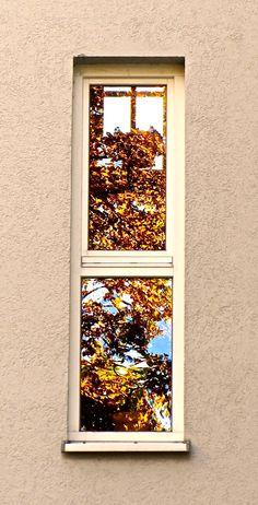 Autumn. Window. Windows, Autumn, Frame, Home Decor, Picture Frame, Decoration Home, Fall Season, Room Decor, Fall