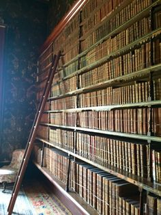 iceinsummer:  Lots of lovely old books in Brodsworth Hall, an old Victorian country house!