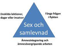 Sex- och samlevnadsarbetet i skolan kan sägas bestå av tre delar. Alla dessa delar är viktiga i planering, uppföljning och utveckling av sex...